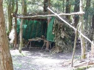 Bodgers Camp 1