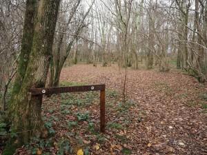 Woodmancote-2